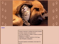 cats4u.org